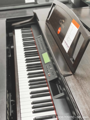 dan-piano-dien-yamaha-clp-711 (2)