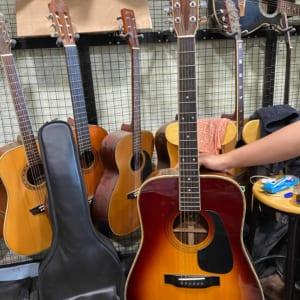 Đàn guitar nhật Morris W515